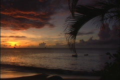 St. Lucian Beach at Sunset - stock footage