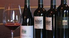 Wine Tasting Stock Footage