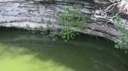 Stock Video Footage of Cenote at Chichen Itza