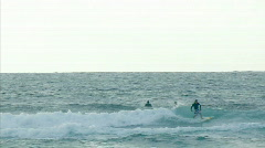 Surfing in Hawaii 3 hdp Stock Footage