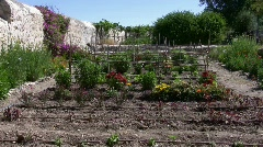 Notre Dame de Sion vegetable garden Stock Footage