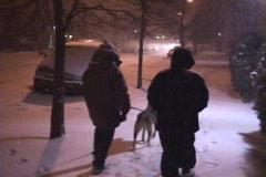 New York City Snowstorm 03 Brooklyn Night - stock footage