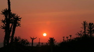 Stock Video Footage of African sunset, HD