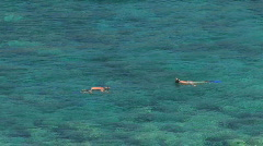 Snorkelers 2 hdp.mov Stock Footage