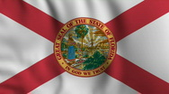 Stock Video Footage of Florida Flag