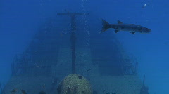 Wreck whole ship Stock Footage