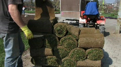 Lawn turf being roll out in park Stock Footage