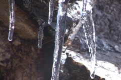 Water drips from icicles. Stock Footage