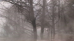 Heavy steam from a nearby hot springs  envelopes winter's bare Stock Footage