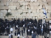 Stock Video Footage of Orthodox Jews pray at the Wailing Wall in the Old City, Jerusalem.