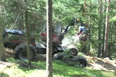 A log skidder drags trees from the forest. Stock Footage