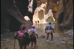 Hikers wade through water in a deep canyon. Stock Footage