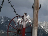 Mountains, red wagon-wheel rim, barbed-wire and cattle horns Stock Footage