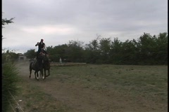 A man balances on two galloping horses as they run down a dirt road. Stock Footage