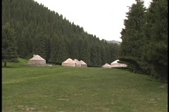 Yurts in northern China grace a clearing surrounded by pine trees. Stock Footage