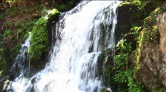 Lush vegetation surrounds a cascading waterfall. - stock footage