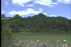 Establishing shot of Rarotonga's grass covered hills, one of the Cook Islands. Stock Footage