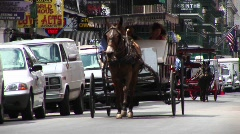 Mule buggies follow each other down a crowded street in New Orleans. Stock Footage