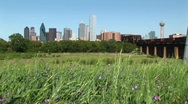 Long shot of the Dallas, Texas city skyline. Stock Footage