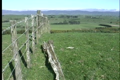 Rolling green hills and pastures highlighted by a rustic, weathered barbed-wire Stock Footage