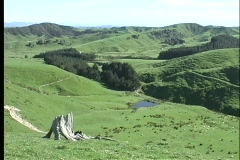 Pan-right over rolling hills and valleys of a New Zealand farm. Stock Footage