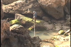 A lone fisherman dips his fishing pole in a pond in Africa. Stock Footage