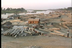 A wide-shot of workers moving logs in Myanmar, Asia. Stock Footage