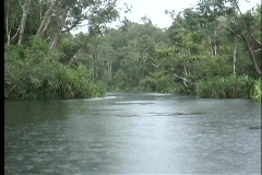 Point-of-view shot of the Amazon River flowing along a tree covered shoreline. Stock Footage