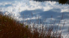 Lake water reflects a blue sky with dry grass near the Sierra Stock Footage