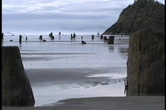 People run along the shore during low tide at Seal Rock in Oregon. Stock Footage