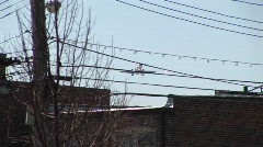 A low-flying airplane passes over power lines and the inner city Stock Footage