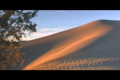 Golden light shines on a beautiful sand dune. Stock Footage