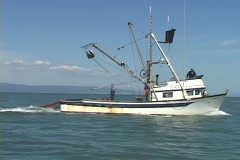 A large net is cast into the ocean from the back of a fishing boat. Stock Footage