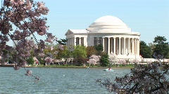 The Jefferson Memorial in Washington, DC and cherry blossoms Stock Footage