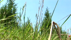 A worms-eye view of a grassy field as a red mower passes by Stock Footage