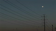 Medium-shot of the moon high above powerlines Stock Footage