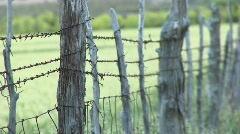 Close-up of barbed-wire wrapping around cedar fence posts Stock Footage