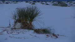 Terrain in the White Sands National Monument in New Mexico Stock Footage