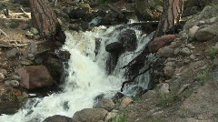 Medium shot of a mountain stream flowing through a forest Stock Footage