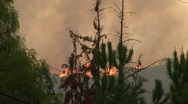 Stock Video Footage of Wildfires burning on the top of a ridge in Southern California