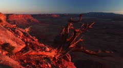 Canyonlands National Park at sunset with the La Sal Mountains Stock Footage