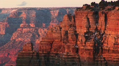 Grand Canyon National Park north rim Stock Footage