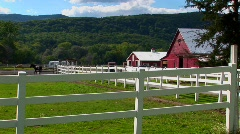 A horse in the background of a white fence and red barn at day Stock Footage