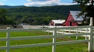 Stock Video Footage of A horse in the background of a white fence and red barn at day