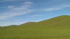 Green fields roll to the horizon against a deep blue sky Stock Footage