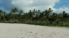 A nearly perfect white sand beach with tropical palms in the distance Stock Footage