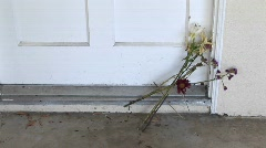 Flowers are left on a doorstep Stock Footage