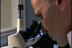 Man positions plate and looks into microscope Stock Footage
