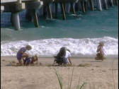 Family plays on beach Stock Footage