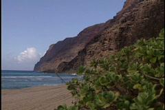 Beautiful Hawaiian beach Stock Footage
